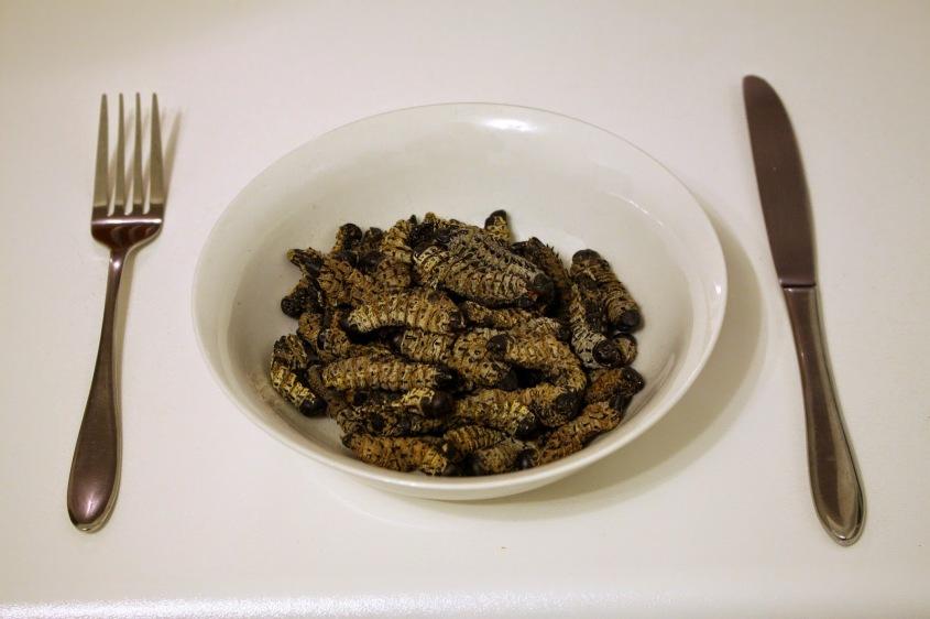 ジンバブエ 料理モパネワーム