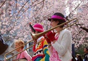 バンクーバー桜ー2