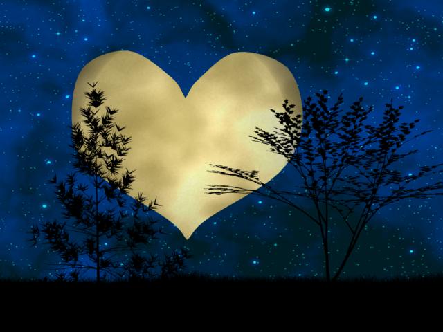 「本日のしし座の満月の行動例」