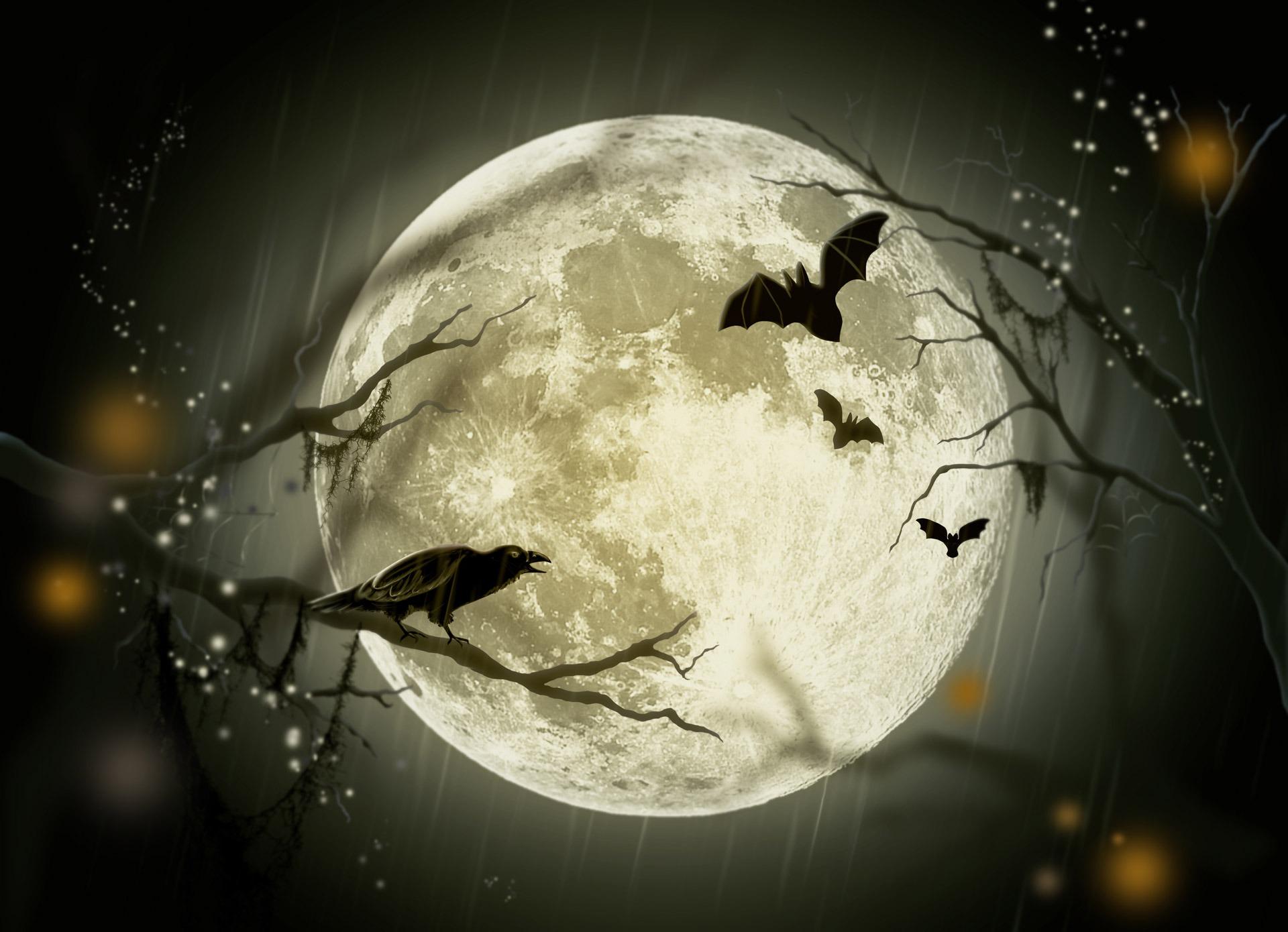 「本日はおひつじ座の満月」