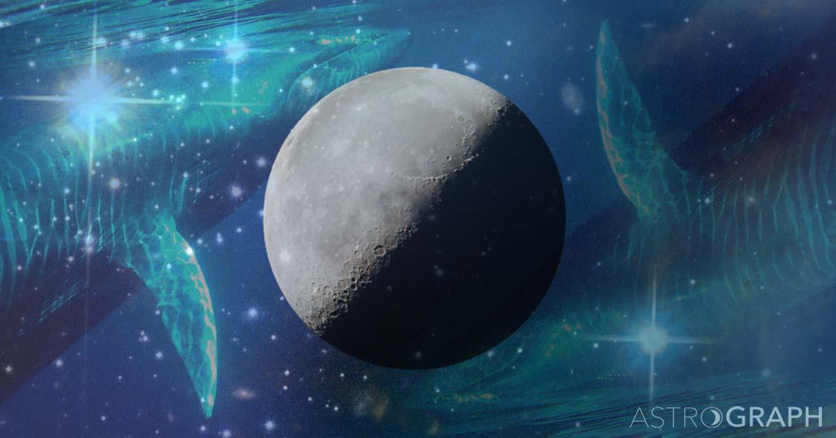 本日下弦の月のキーワード