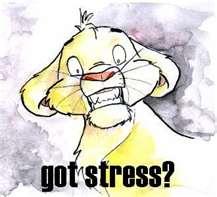 ストレスの効用?!